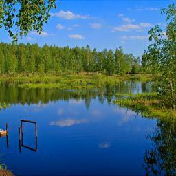 Летняя зарисовка у озера #4