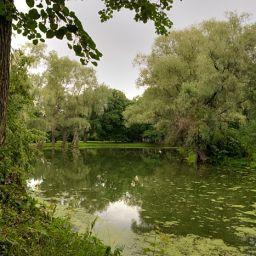 Болдинский парк. #1