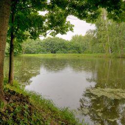 Болдинский парк. #2