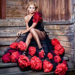 упавшие розы / fallen rose