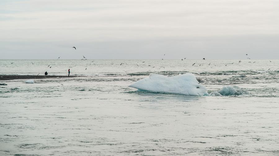 Исландия день третий. Океан рядом с лагуной Йокулсарлон 0051