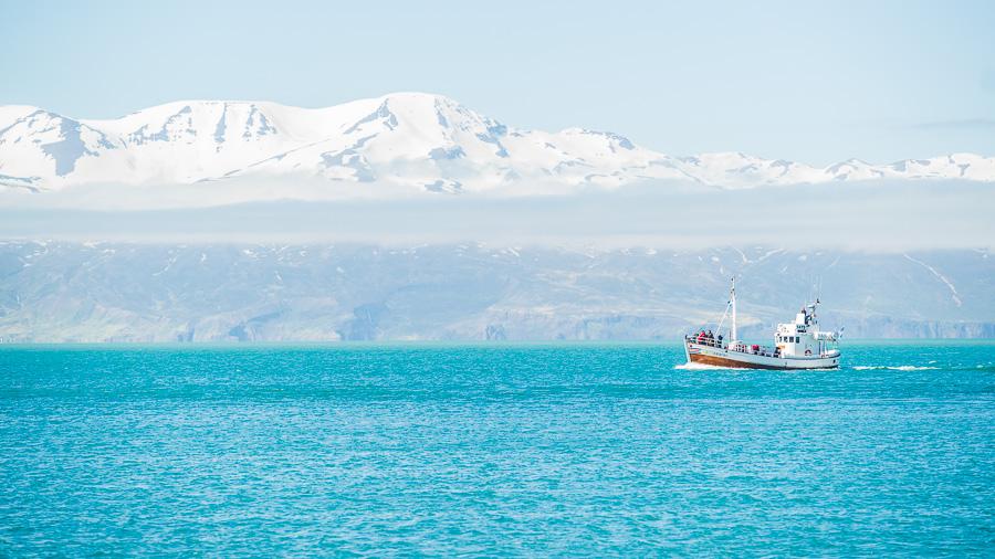 Исландия день шестой. Кораблик в заливе около Хусавика