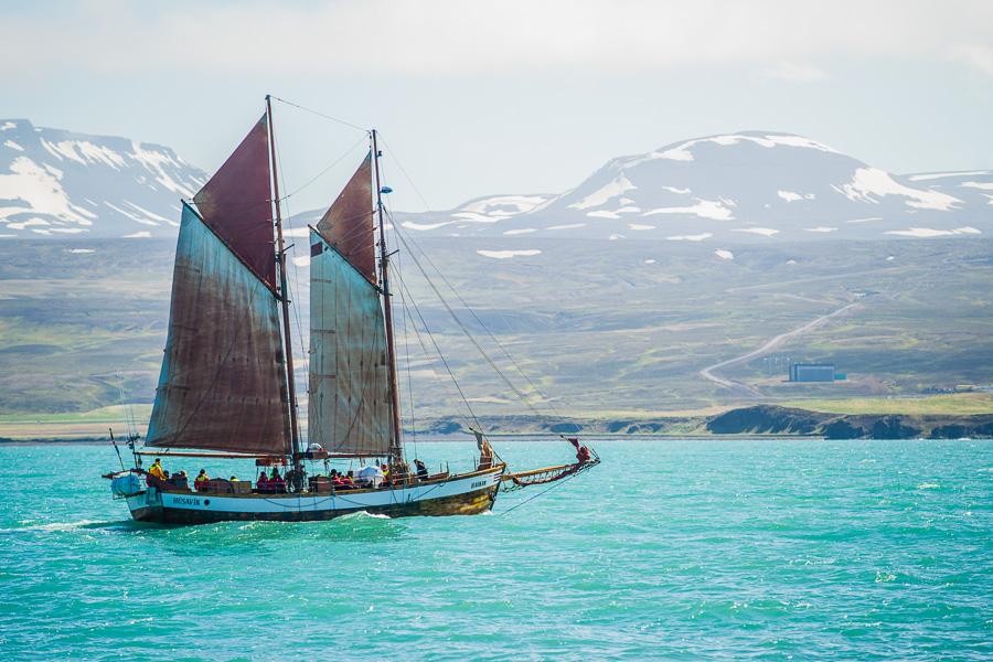 Исландия день шестой. Шхуна в заливе около Хусавика