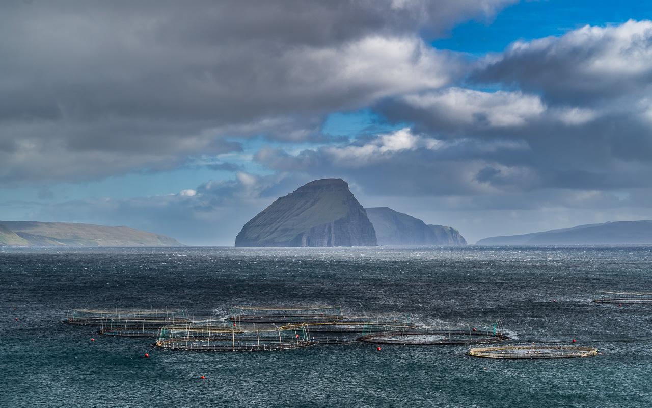 Фареры, день 4 1421|Плантации лосося во фьорде