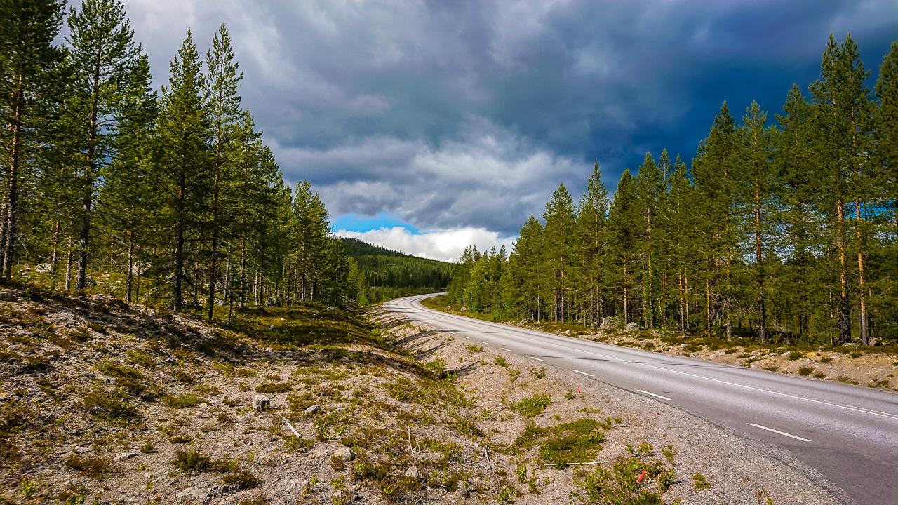 Лофотены, дорога 0254|Дороги в шведской Лапландии